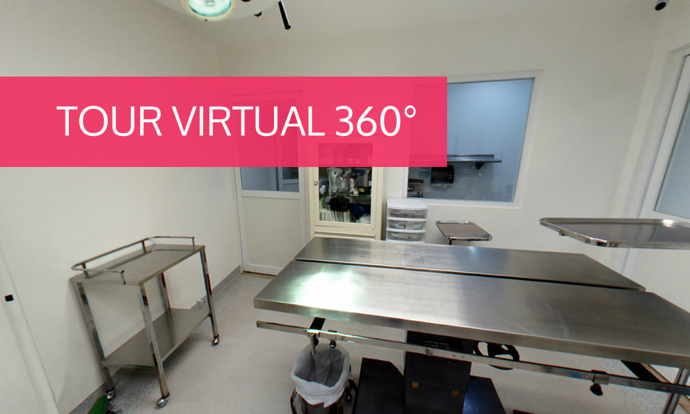 Tour Virtual 360° de nuestras instalaciones de clinica y hospital veterinario
